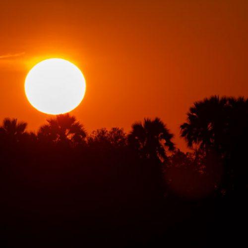 wild-focus-safaris_sunset_botswana_S